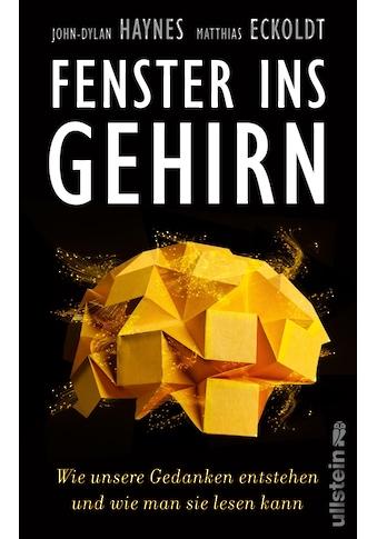 Buch »Fenster ins Gehirn / John-Dylan Haynes, Matthias Eckoldt« kaufen