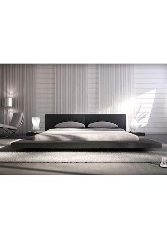 SalesFever Polsterbett, Design Bett in moderner Optik, Lounge Bett inklusive Nachttisch kaufen