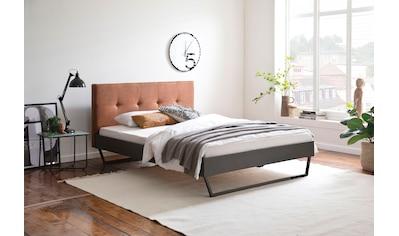 meise.möbel Metallbett »Boston«, Polsterkopfteil mit 4-Punkt-Steppung, diverse... kaufen
