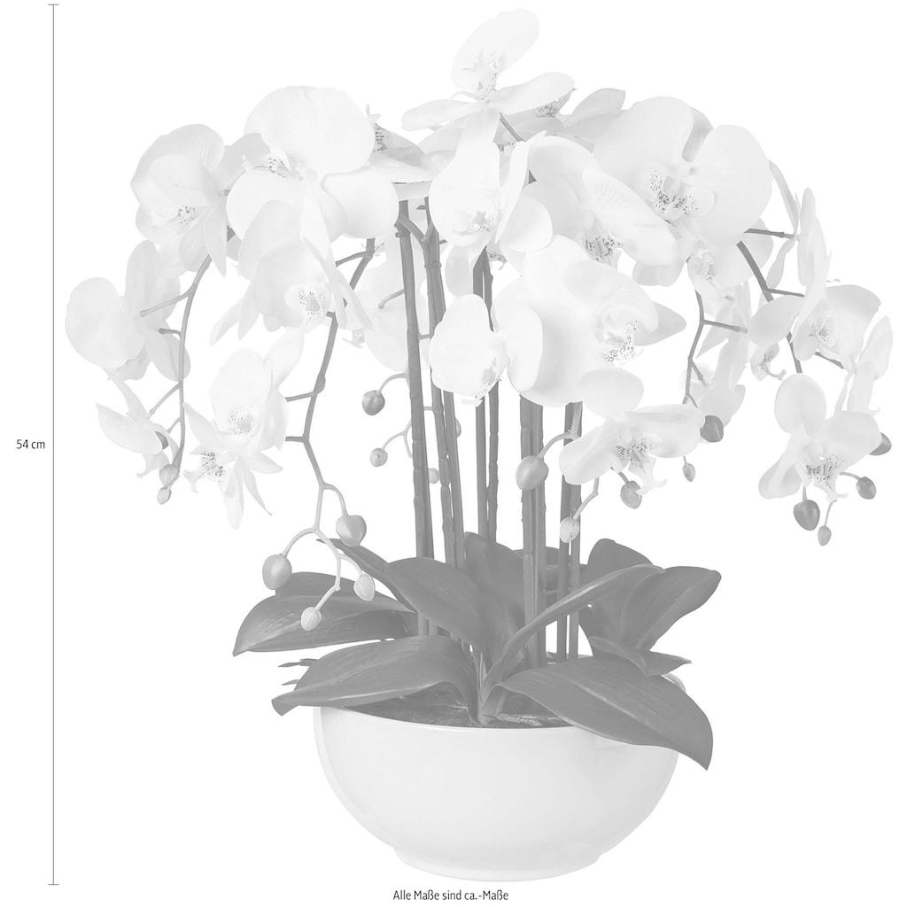 Creativ green Kunstpflanze