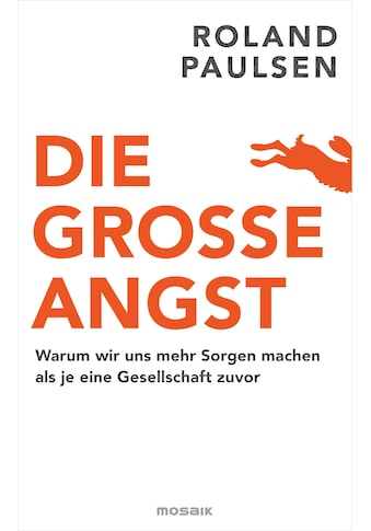 Buch »Die große Angst / Roland Paulsen, Ulrike Brauns, Ricarda Essrich« kaufen