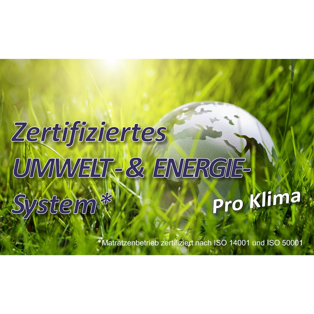 BeSports Lattenrost »Duo Powerflex«, (1 St.), Note: SEHR GUT, Haus&Garten-Test 2018 & extraflach