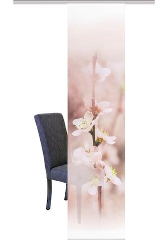 Vision S Schiebegardine »KISGOLE«, HxB: 260x60, Schiebevorhang Bambus-Optik Digitaldruck kaufen