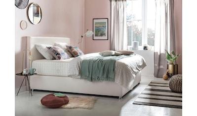 grüne betten Boxspringbett »Amelia«, mit 7-Zonen-Tonnentaschenfederkern-Matratze und Zierkissen, 100% vegan kaufen