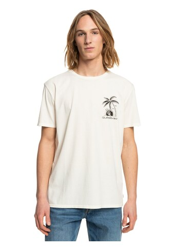Quiksilver T-Shirt »Days Off« kaufen