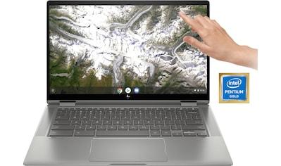 HP Chromebook x360 14c - ca0215ng Chromebook (35,56 cm / 14 Zoll, Intel,Pentium Gold) kaufen