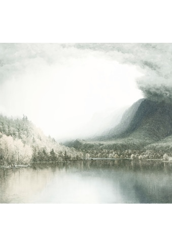 Komar Fototapete »Vliestapete Journey«, bedruckt-geblümt-floral-realistisch, 300 x 280 cm kaufen