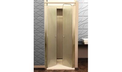 Pendeltür »Lavea«, BxH: 70 x 195 cm, Milchglas kaufen