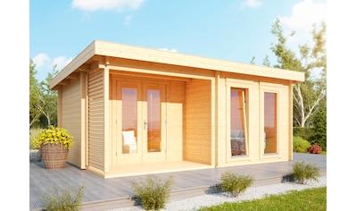 Wolff Gartenhaus »Cordoba 44-B Modern« kaufen
