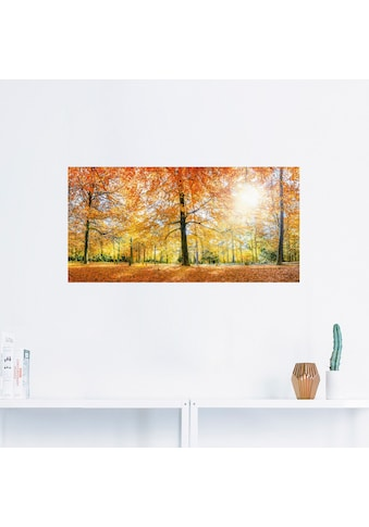 Artland Wandbild »Herbstwald Panorama«, Wald, (1 St.), in vielen Größen & Produktarten... kaufen