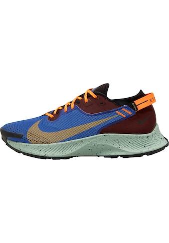 Nike Laufschuh »Pegasus Trail 2 Gore - Tex« kaufen