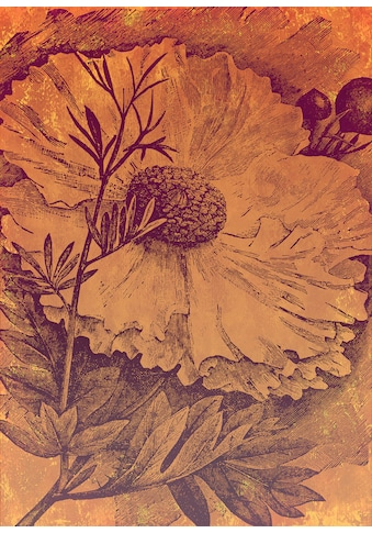 Komar Fototapete »Vliestapete Harvest«, bedruckt-geblümt-floral-realistisch, 200 x 280 cm kaufen