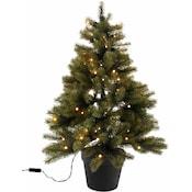 Weihnachtsbaum im topf kaufen wien