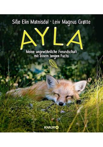 Buch »Ayla - meine ungewöhnliche Freundschaft mit einem jungen Fuchs / Silje Elin... kaufen