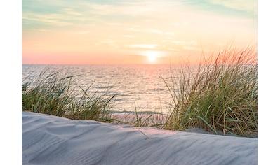 CONSALNET Fototapete »Sonnenuntergang Strand«, Vlies, in verschiedenen Größen kaufen