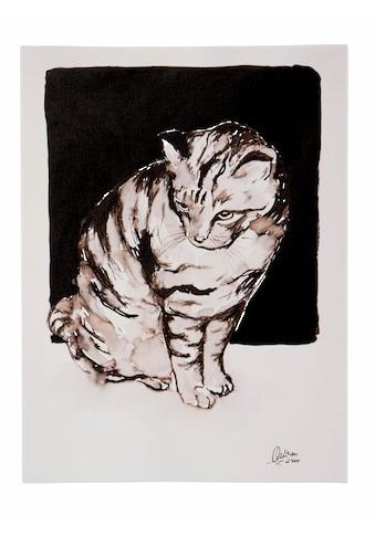 Guido Maria Kretschmer Home&Living Leinwandbild »Katze«, von Frank Mutters, gerahmt,... kaufen