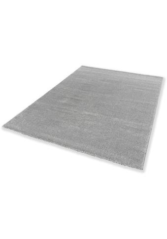 SCHÖNER WOHNEN-Kollektion Teppich »Pure 190«, rechteckig, 21 mm Höhe, Wohnzimmer kaufen