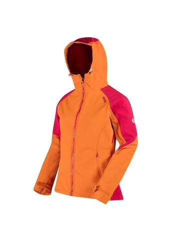 Regatta Softshelljacke »Great Outdoors reflektierende Damen- Desoto III« kaufen
