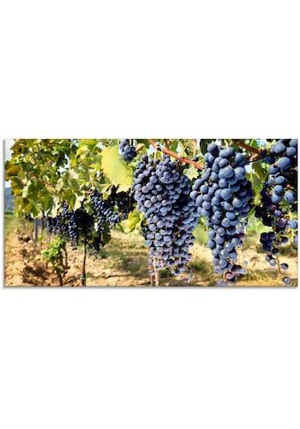 Artland Glasbild »Toskanische Weintrauben«, Süßspeisen, (1 St.) kaufen
