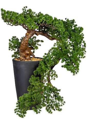 Creativ green Kunstbonsai »Bonsai Lärche Han-Kengai«, im Magnesiatopf kaufen
