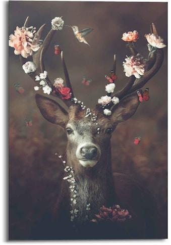 Reinders! Wandbild »Wandbild Hirsch Romantisch - Kolibri - Schmetterling -... kaufen