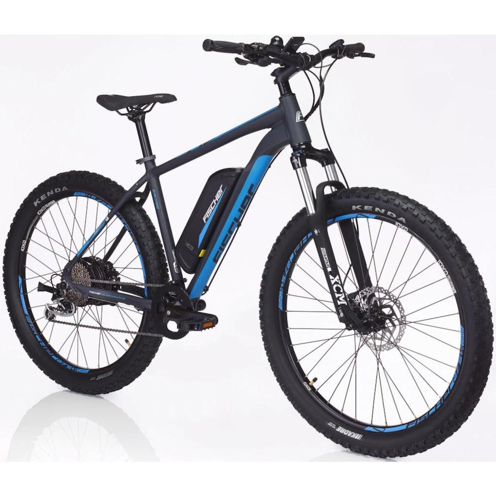 FISCHER Fahrräder E-Bike »EM 1725.1«, 10 Gang, Shimano, Deore, Heckmotor 250 W