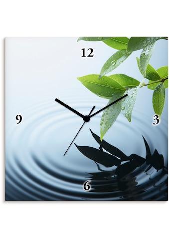 Artland Wanduhr »Pflanze und Wasser«, lautlos, ohne Tickgeräusche, nicht tickend,... kaufen