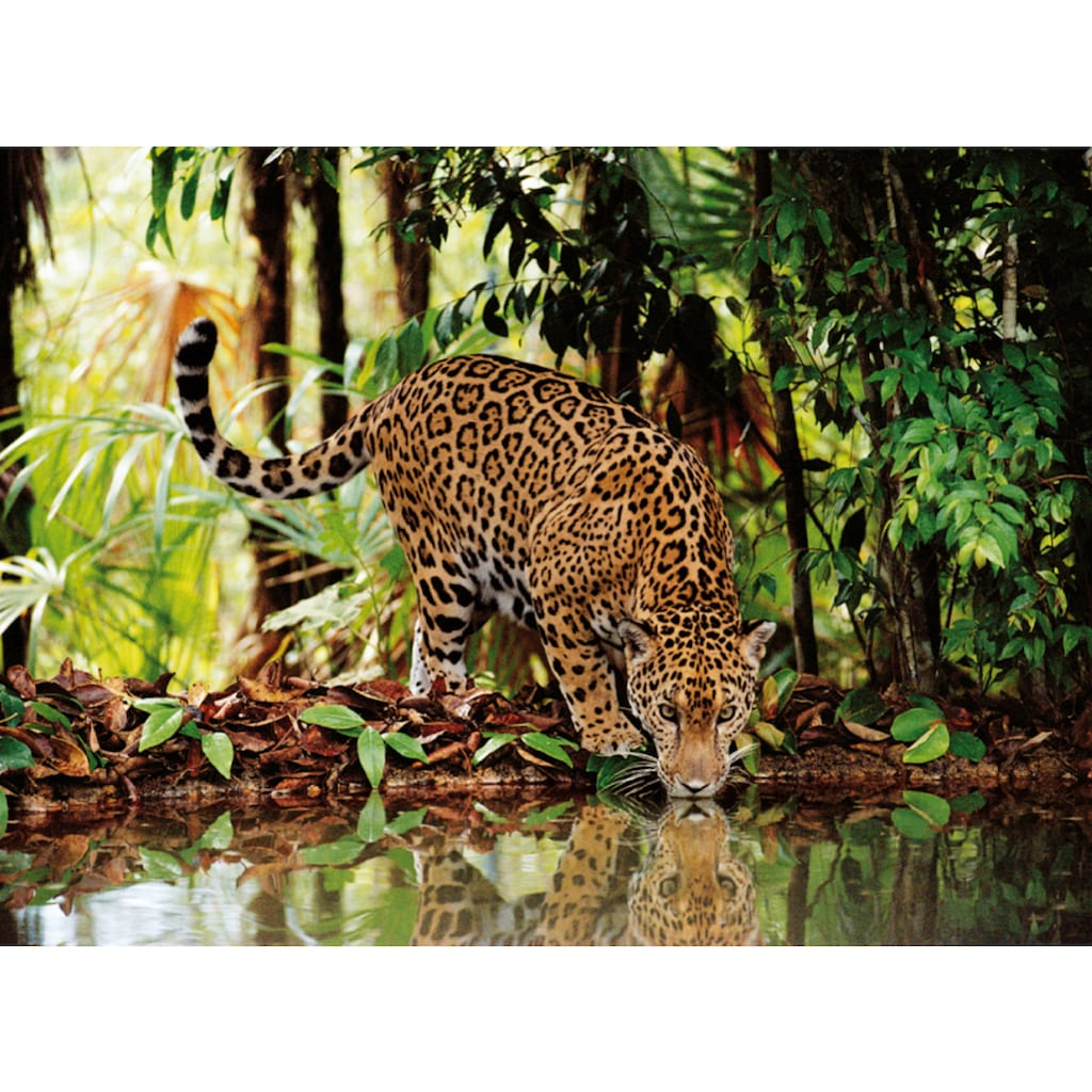 Clementoni® Puzzle »High Quality Collection - Leopard«, Made in Europe