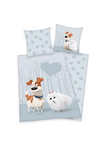 Herding Kinderbettwäsche »Pets 2, Baumwoll-Renforcé« kaufen