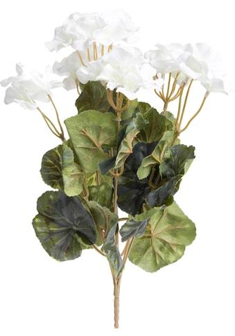 Botanic-Haus Kunstblume »Geranienbusch« kaufen