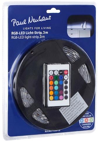 Paul Neuhaus LED-Streifen »TEANIA« kaufen