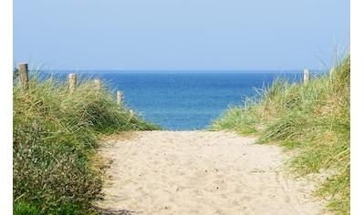 PAPERMOON Fototapete »Dune at the Ocean«, Vlies, in verschiedenen Größen kaufen