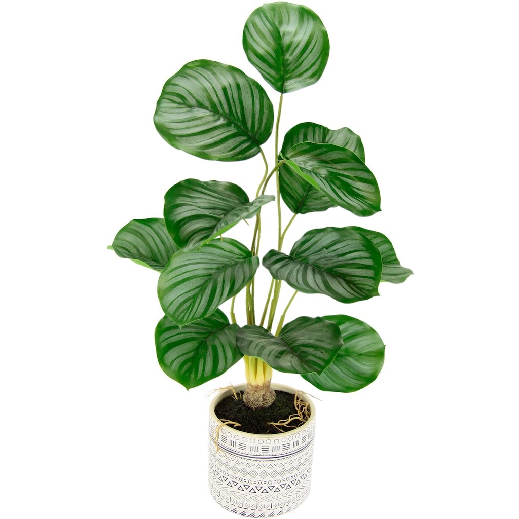 andas Kunstpflanze »Lennja«, im Keramiktopf