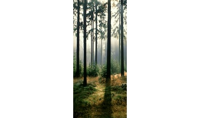 PAPERMOON Fototapete »Forest  -  Türtapete«, Vlies, 2 Bahnen, 90 x 200 cm kaufen
