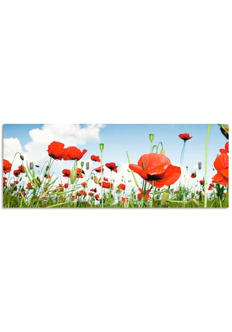 Artland Schlüsselbrett »Feld mit Mohnblumen unter Himmel« kaufen