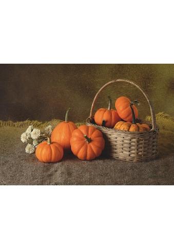 Home affaire Leinwandbild »Lukchai: Herbst Kürbisse«, 70/50 cm kaufen