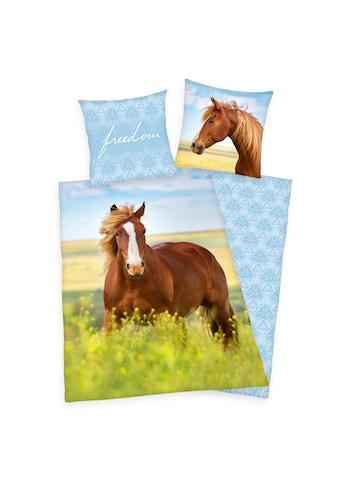 Herding Kinderbettwäsche »Pferd, Baumwoll-Renforcé« kaufen