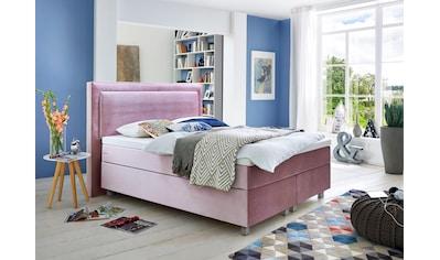 Guido Maria Kretschmer Home&Living Boxspringbett, mit Komfortschaum-Topper kaufen