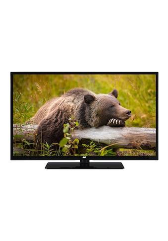 JVC LED - Fernseher (32 Zoll, Full HD, Triple - Tuner) »LT - 32V45LFC« kaufen