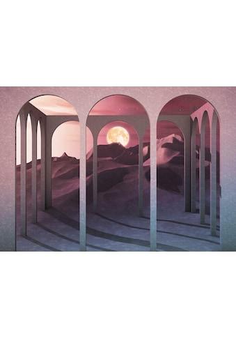 Komar Fototapete »Vliestapete Sands Of Time«, bedruckt-geblümt-floral-realistisch, 400... kaufen