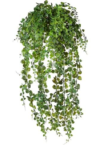 Creativ green Kunstranke »Adianthumhänger« kaufen