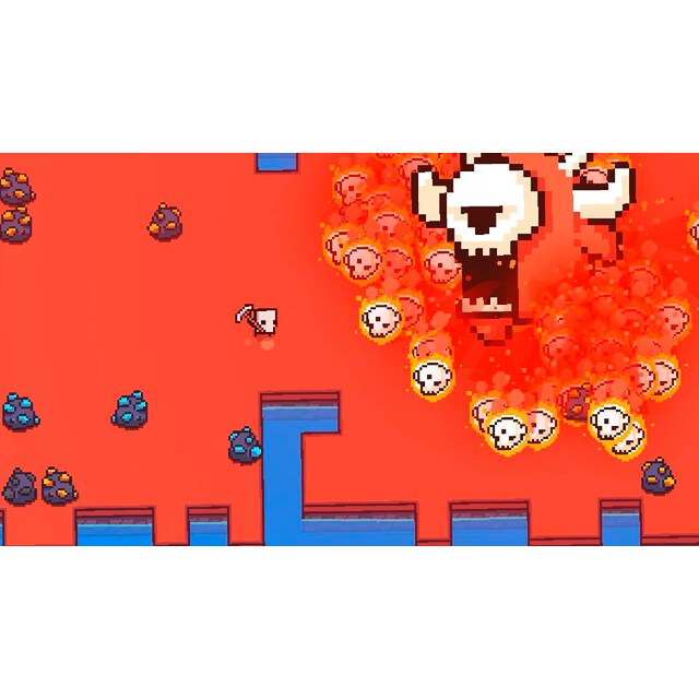 Forager Nintendo Switch