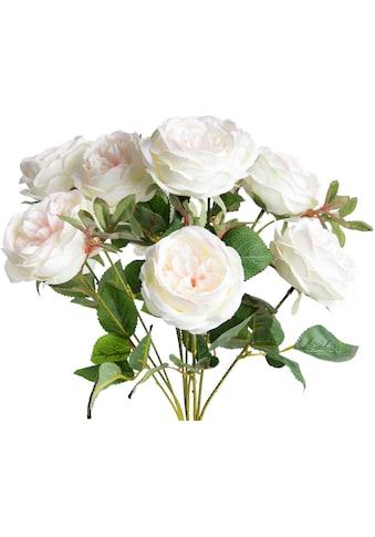 Botanic-Haus Kunstblume »Englischer Rosenbusch« kaufen