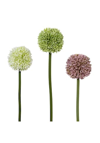 Creativ green Kunstblume (Set, 3 Stück) kaufen
