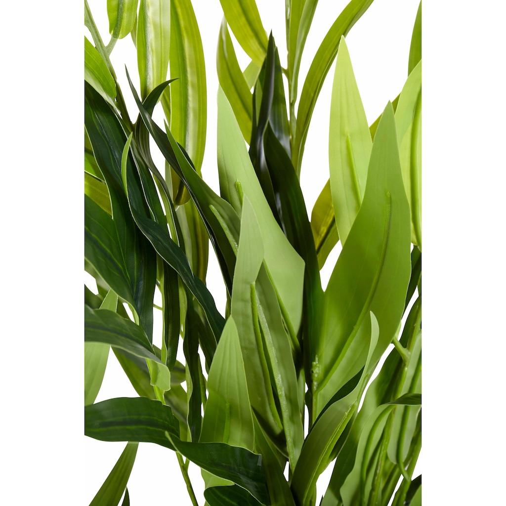 Creativ green Kunstpalme »Palme«