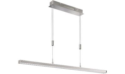 FISCHER & HONSEL Pendelleuchte »Vitan«, LED-Board, Warmweiß, Hängeleuchte, Hängelampe kaufen