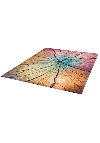 wash+dry by Kleen-Tex Teppich »Wood Land«, rechteckig, 9 mm Höhe, Wohnzimmer kaufen