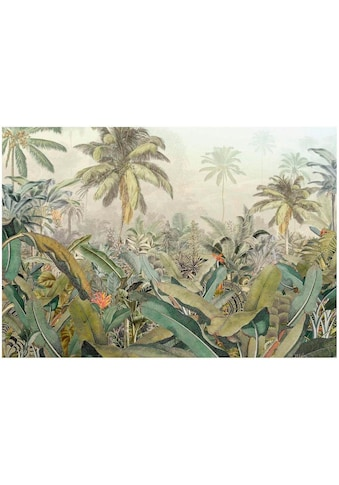 KOMAR Vliestapete »Amazonia 4er« kaufen