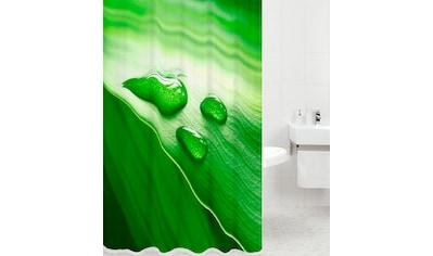 SANILO Duschvorhang »Green Leaf«, 180 x 180 cm kaufen