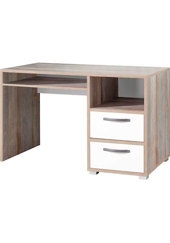 Begabino Schreibtisch »Moon«, im modernen Dekor Driftwood kaufen